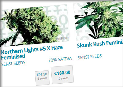 Buy Cannabis Seeds at the sensi seeds webshop