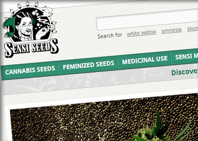Cannabis news and videos at the sensi seeds blog